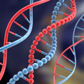 dna_Small
